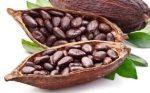Illatolaj Vaníliás kakaóbab (Vanilla Cocobean)