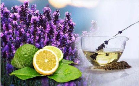 Illatolaj Levendula bergamott (Lavender Bergamot)