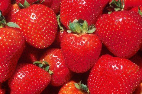 Illatolaj Sensory Eper (Strawberry)10ml