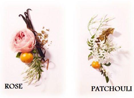 Illatolaj Rózsa-patchouli (Rose Patchouli)
