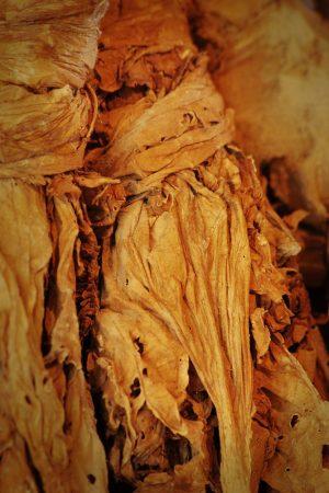 Illatolaj Sensory Dohánylevél (Tobacco leaf) 30ml