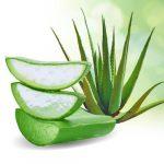 Aloe Vera gél (Juice) 99%-os  100ml