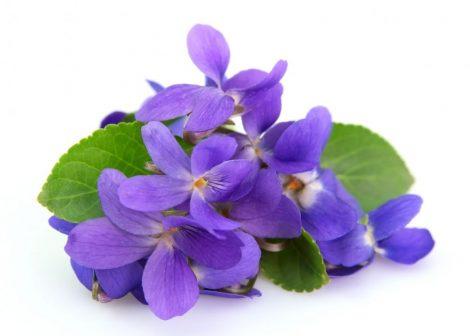 Illatolaj Sensory Ibolya (Violet) 50ml