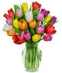 Illatolaj Sensory Tulipán (Sweet Tulip) 10ml