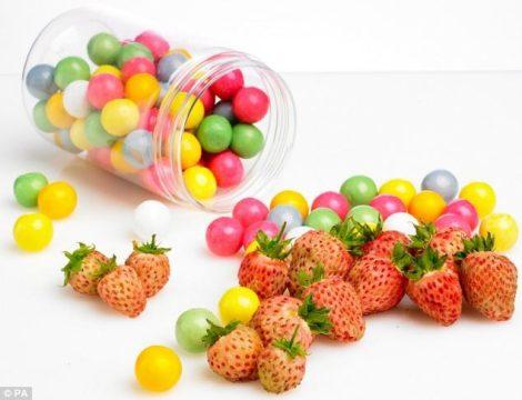 Illatolaj Sensory Rágógumi gyümölcsös (Berry Bubblegum) 50ml