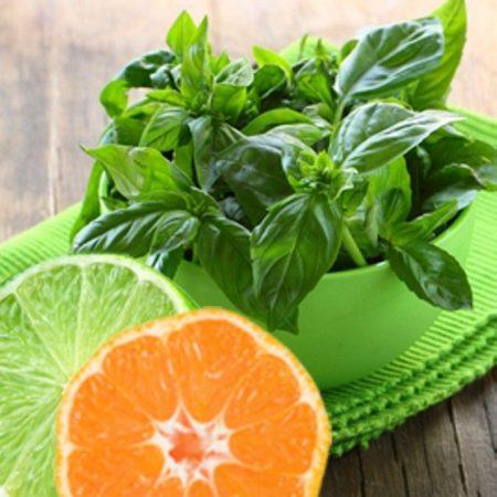 Illatolaj Sensory Lime bazsalikom mandarin (Citrus Basil) 50ml